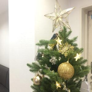 クリスマスツリーを飾り